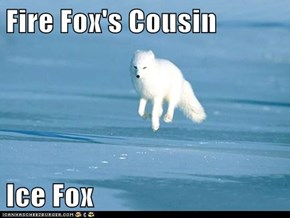 Fire Fox's Cousin  Ice Fox