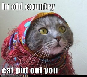 In old country  cat put out you