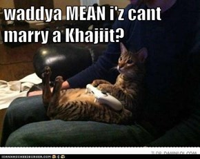 waddya MEAN i'z cant marry a Khajiit?