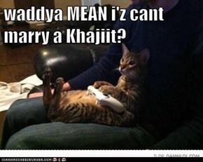 waddya MEAN i'z cant marry a Khajiit?