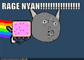RAGE NYAN!!!!!!!!!!!!!!!!
