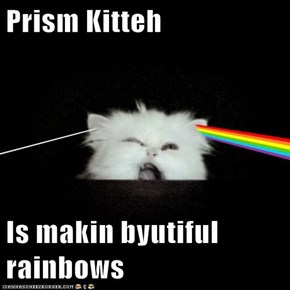 Prism Kitteh  Is makin byutiful rainbows