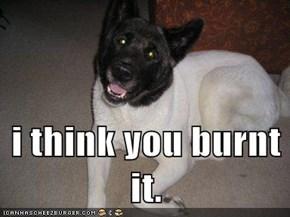 i think you burnt it.