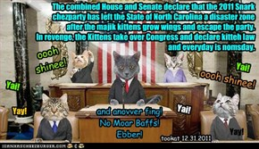 The combined House and Senate declare that the 2011 Snark chezparty has left the State of North Carolina a disaster zone after the majik kittens grow wings and escape the party. In revenge, the Kittens take over Congress and declare kitteh law and everyda