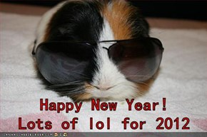 Happy New Year!      Lots of lol for 2012