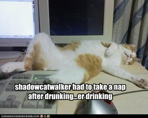 shadowcatwalker had to take a nap after drunking...er drinking
