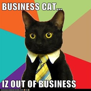 BUSINESS CAT...  IZ OUT OF BUSINESS