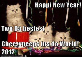 Happi New Year! Twe Da bestest Cheezypeeps ins da World! 2012