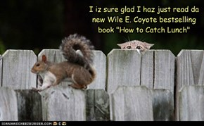 "I iz sure glad I haz just read da new Wile E. Coyote bestselling book ""How to Catch Lunch"""
