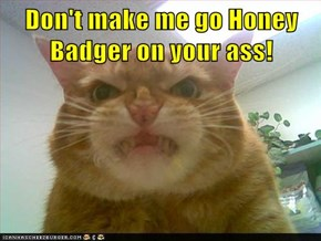 Don't make me go Honey Badger on your ass!