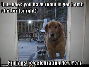 Um...does you have room in yer bomb shelter tonight?  Humans be celebrating New Year