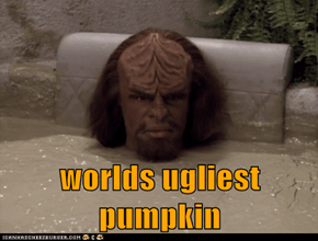 worlds ugliest pumpkin