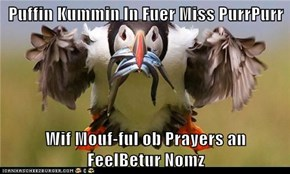 Puffin Kummin In Fuer Miss PurrPurr  Wif Mouf-ful ob Prayers an                  FeelBetur Nomz