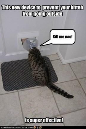 Poor kitteh!