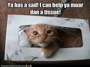 Kleenex kitteh wants to wipe out your tears!