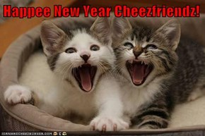 Happee New Year Cheezfriendz!