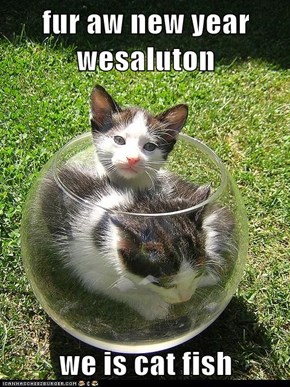 fur aw new year wesaluton  we is cat fish