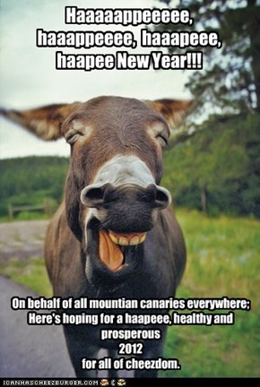 Well...If you've ever heard a mule, you'll get it.