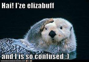 Hai! I'ze elizabuff  and I is so confused :)