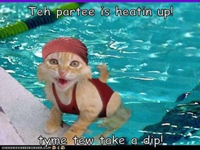 Teh partee is heatin up!  tyme tew take a dip!