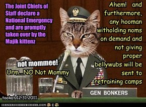 The Joint Chiefs of Staff declare a National Emergency and are promptly taken over by the Majik kittenz