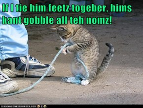 If I tie him feetz togeber, hims kant gobble all teh nomz!
