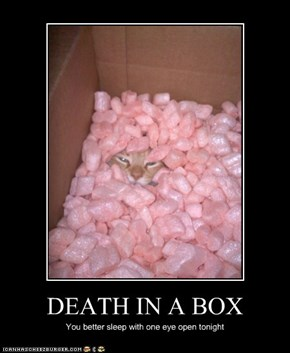 DEATH IN A BOX