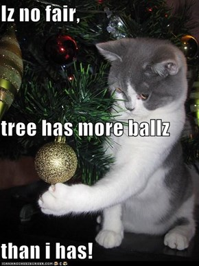 Iz no fair, tree has more ballz  than i has!