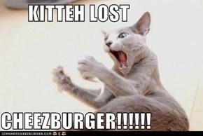 KITTEH LOST  CHEEZBURGER!!!!!!