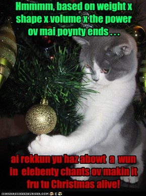 Kitteh's Christmas Calculations ...