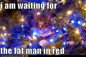 i am waiting for  the fat man in red