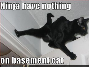 Ninja have nothing  on basement cat