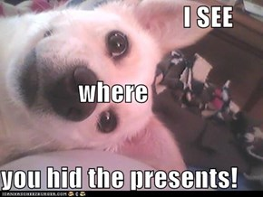 I SEE where you hid the presents!
