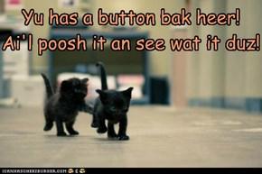 Ai fownd a button!