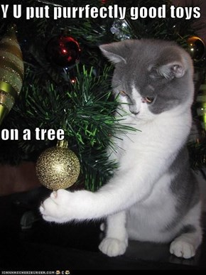 Y U put purrfectly good toys on a tree