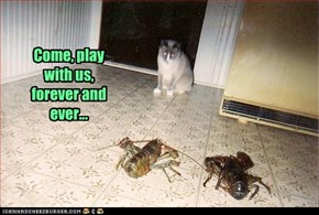Come, play with us, forever and ever...