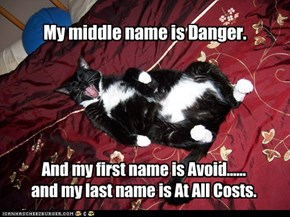 My middle name is Danger.
