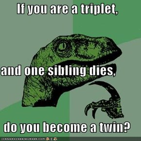 If you are a triplet, and one sibling dies, do you become a twin?