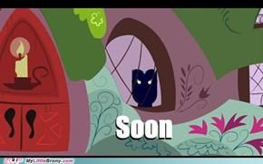 owlicious soon