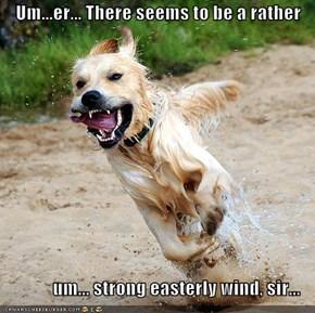 Um...er... There seems to be a rather                um... strong easterly wind, sir...