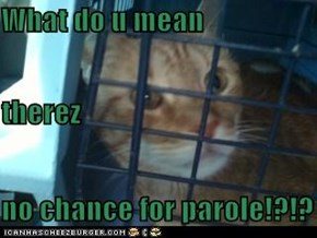 What do u mean therez no chance for parole!?!?