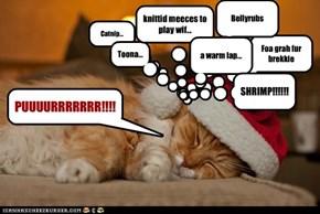 Catnip...