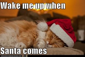 Wake me up when  Santa comes