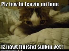 Plz tew bi leavin mi lone  Iz nawt finishd sulkin yet !