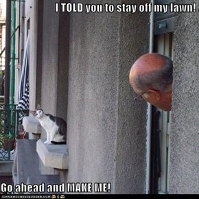 I TOLD you to stay off my lawn!  Go ahead and MAKE ME!