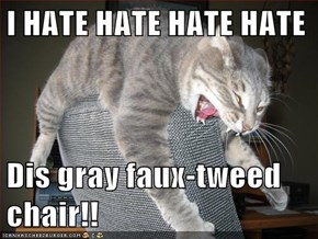 I HATE HATE HATE HATE  Dis gray faux-tweed chair!!