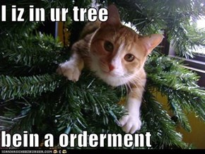 I iz in ur tree  bein a orderment