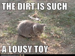 THE DIRT IS SUCH  A LOUSY TOY