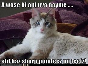 A wose bi ani uva nayme ....  stil haz sharp pointeez un teefz!