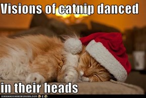 Visions of catnip danced  in their heads
